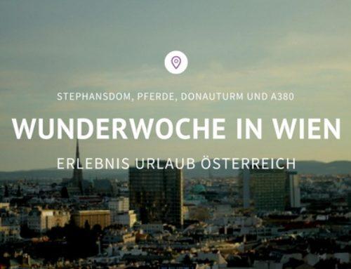 WunderWoche in Wien: Stephansdom, Pferde, Donauturm und A380